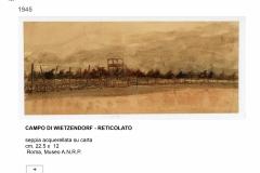 19.-CAMPO-DI-WIETZENDORF-RETICOLATO