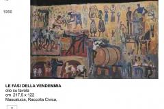 70.-LE-FASI-DELLA-VENDEMMIA-1956
