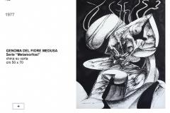 162.-GENOMA-DEL-FIORE-MEDUSA-1978