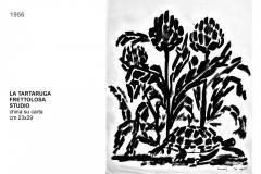 5.3-TARTARUGA-FRETTOLOSA